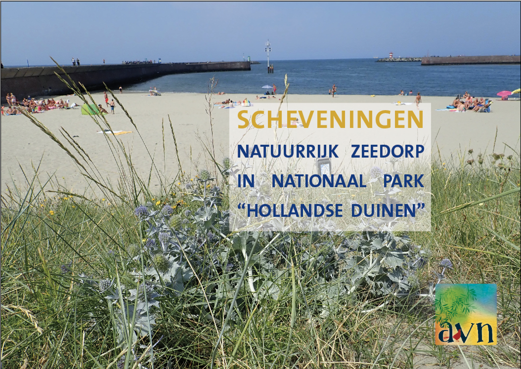 Havennatuur in Scheveningen