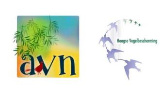 Persbericht AVN en HVB – Pleidooi voor vuurwerkverbod