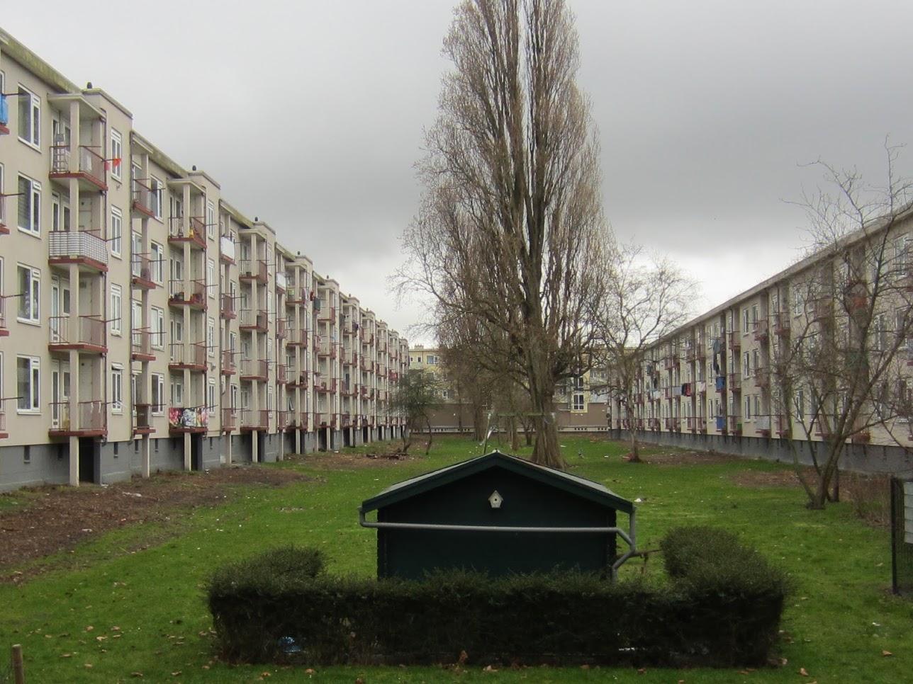 Plannen voor een natuurrijke binnentuin in Moerwijk